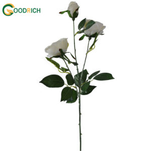 3 Heads Rose Flower for Decoration pictures & photos