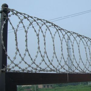 Cheap Hot-Dipped Galvanized Razor Barbed Wire for Prison pictures & photos