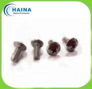 High Quality Pan Head Screw Machine Screw, Truss Head Screw pictures & photos