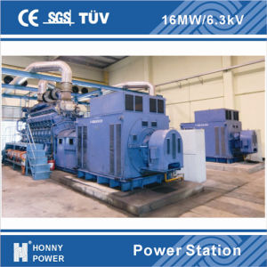 1000rpm 1200rpm Low Speed Generator Power Plant pictures & photos