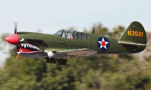Giant Size RC Model Plane (P40)
