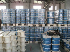 Steel Wire Rope Tongguan Brand 6*19s-Iwr pictures & photos