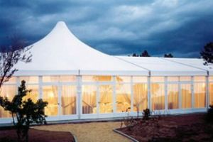 Transparent White Outdoor Large Event Party Marquee Wedding Canopy pictures & photos