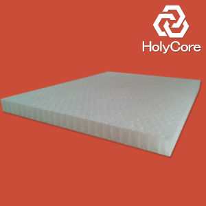 PP Honeycomb Core for Rtm/Closed Moulds