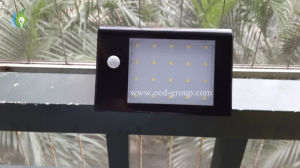 16PCS LEDs and High Quality LED Solar Motion Sensor Light LED Garden Lamp From China pictures & photos