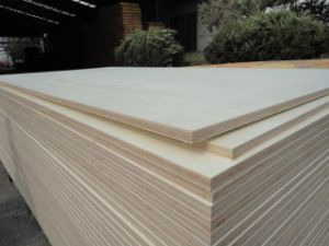 Birch F/B, Poplar, Hardwood, Combi Core Commercial Plywood pictures & photos