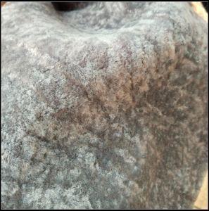 Super Soft Rabbit Fake Fur pictures & photos