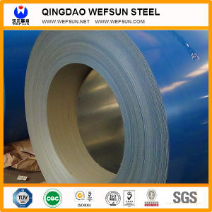 Color Coated Steel Coil/Plate pictures & photos