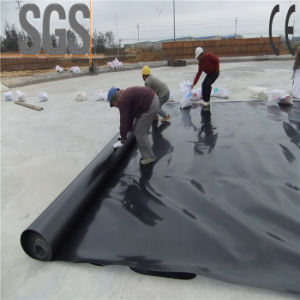 LDPE Geomembrane Liner for Effluent Pond pictures & photos