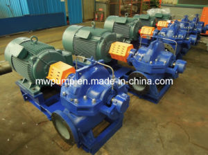 Split Case Pump with Electric Motor pictures & photos