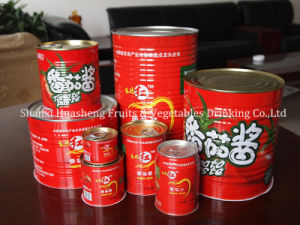 800g 22%-24% Canned Tomato Paste pictures & photos