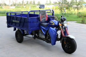 Hot Sale Three Wheel Motorcycle with Cargo for Deliverly pictures & photos