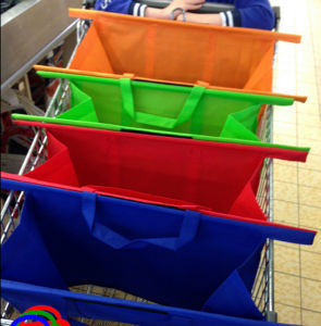 100g Non-Woven Material and Folding Style Folding Reusable Bags Grocery Cart Bag pictures & photos