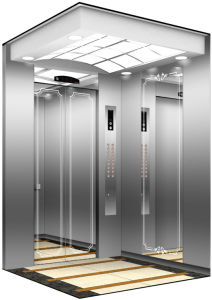Great 8 Passenger Residential Elevator Cheap Price pictures & photos