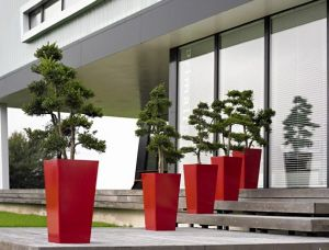Fo-209 Large Decorative Hotel Fiber Glass Planter pictures & photos