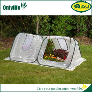 Onlylife Outdoor Garden Vegetable Greenhouse pictures & photos