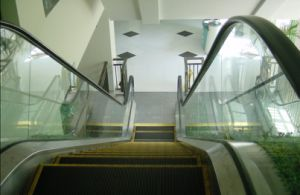 Escalator for Indoor / Escalators (W8)