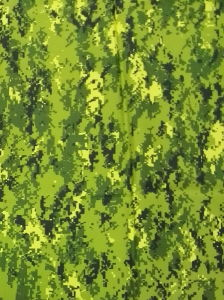 Maylasia Army Style Military Camouflage Fabric pictures & photos