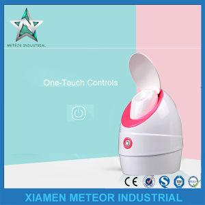 Best Home Use Portable Table Top Anion Steamer Face SPA pictures & photos