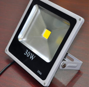 High Quality Slim Housing LED Flood Light 30W pictures & photos