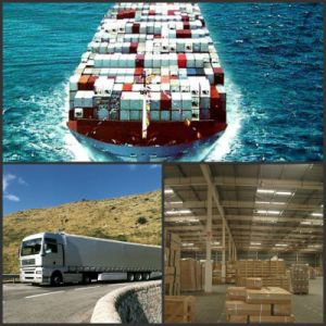 Shipping Company/Container Shipping/Shipping Charges/Cost From China to Oman, Qatar, Bahrain, Israel, Syria pictures & photos