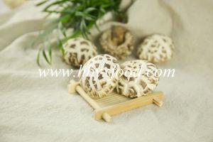 Bulk Crop Dried Log White Flower Shiitake Mushroom pictures & photos
