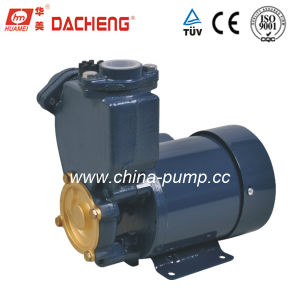 PS Series Self-Priming Pump (PS-126) pictures & photos