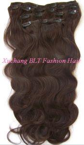 Human Hair Clips in Hair Extension