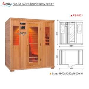 Pary Far-Infrared Sauna Room (Pr-9501)