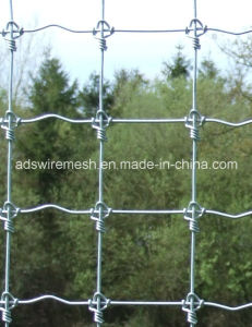 Hot Sale Fixed Knoted Fence, Deer Fence, Horse Fence pictures & photos