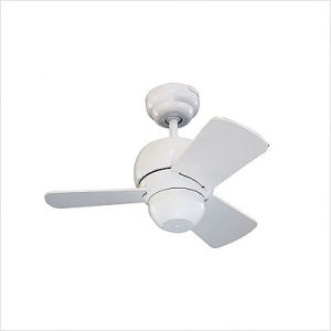 Ceiling Fan - Powder Coating