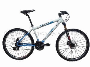 Hot Sale Flying Pigeon off Road Bicycle (MTB-064) pictures & photos