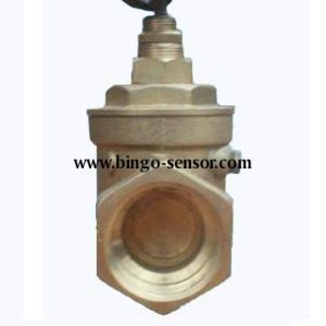 Paddle Type Flow Switch in Sizes G1/2′′ pictures & photos