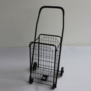 30kg Shopping Cart