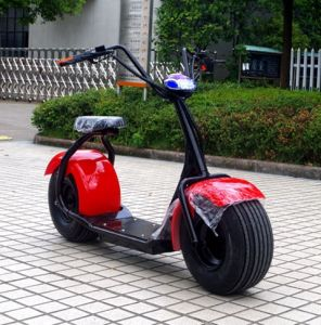 Newest Top Seller Product 2 Fat Tyre 1000W E Scooter Citycoco (JY-ES005) pictures & photos