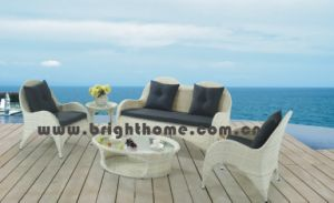 Seagull Outdoor Rattan Garden Furniture (BP-823) pictures & photos
