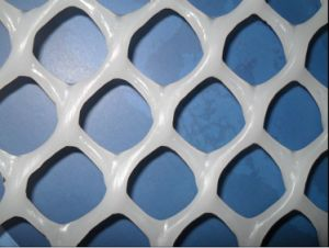 2cm to 3.5cm Mesh Size Plastic Flat Wire Mesh pictures & photos