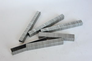 Industrial Wire Staple (F75 Series) pictures & photos