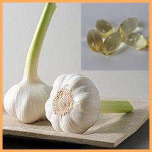 GMP Certified Halal Odorless Garlic Oil Softgel Capsules