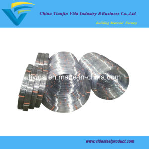 Oval Steel Wire (BWG4-BWG33) pictures & photos