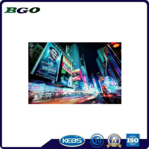 PVC Laminated Backlit Banner Printing Flex Vinyl (500dx500d 18X12 510g) pictures & photos