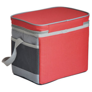 Insulated Cooler Bag with Inside Plastic Cooler Box for Promotion pictures & photos