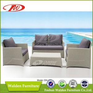 Gorgeous Patio Sofa (DH-180) pictures & photos