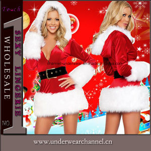 2016 Newest Sexy Women Adult Party Christmas Costume (TDD80357) pictures & photos