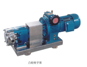 Food Sanitary 1000L/H Rotary Lobe Pump pictures & photos