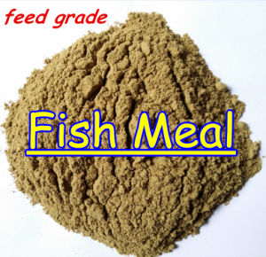 Fish Meal Protein with Lowest Price Protein 65% 62% pictures & photos