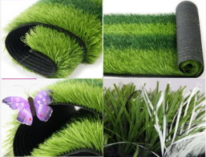 Made in China Artificial Grass for Football Field with High Quality pictures & photos