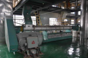 China Professional Supplier of Sunflower-Seed Pretreatment Machine pictures & photos