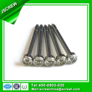 SUS304 Round Head Self Tapping Stainless Steel Special Screw pictures & photos