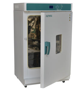Constant Temperature Incubators (WPL30(45, 65, 125, 230)) Ce Incubator pictures & photos
